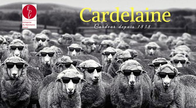 Cardelaine