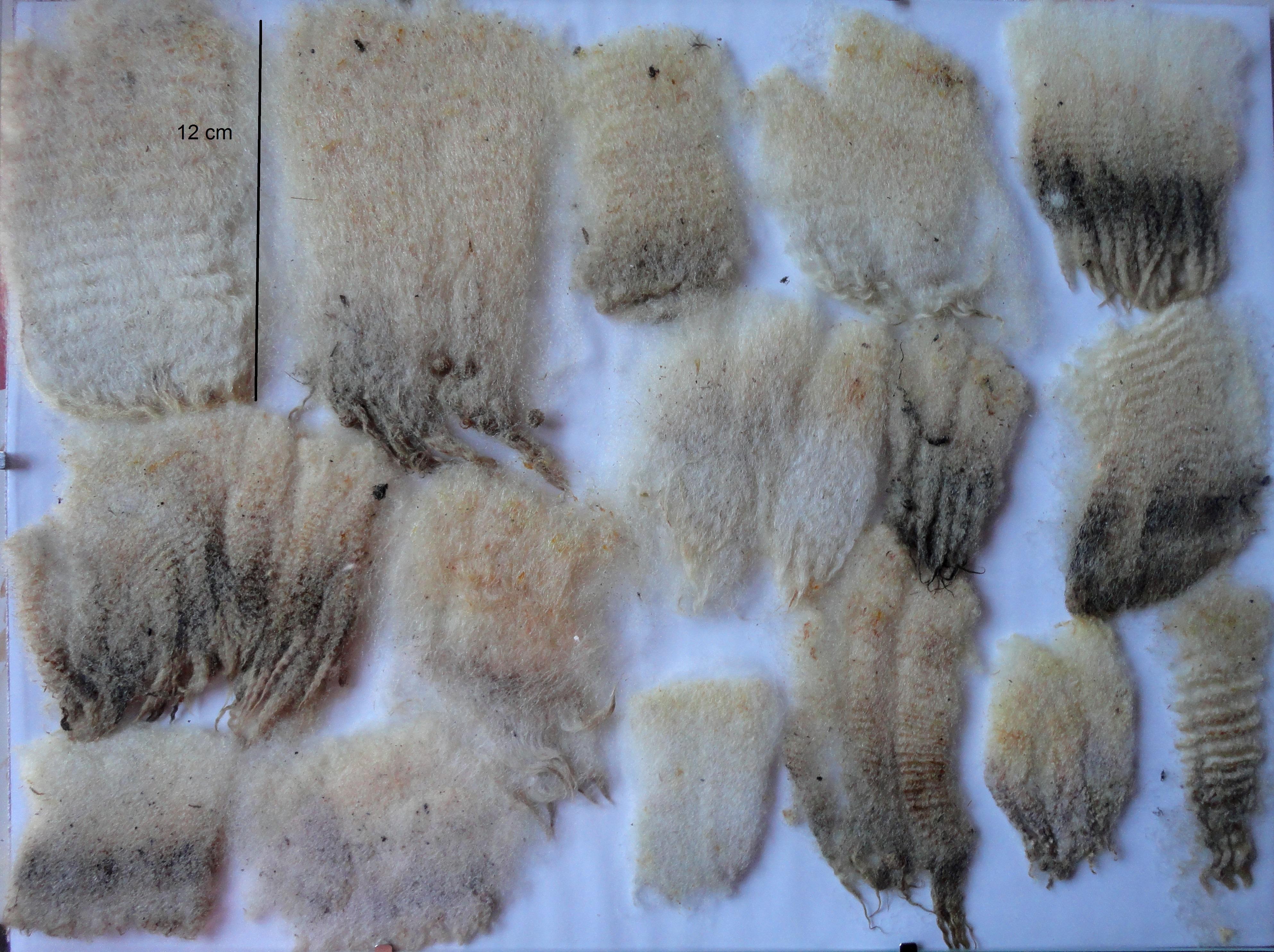 Différentes qualités de laine à matelas
