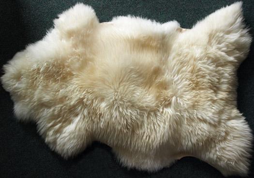 La laine est un plaisir divin !