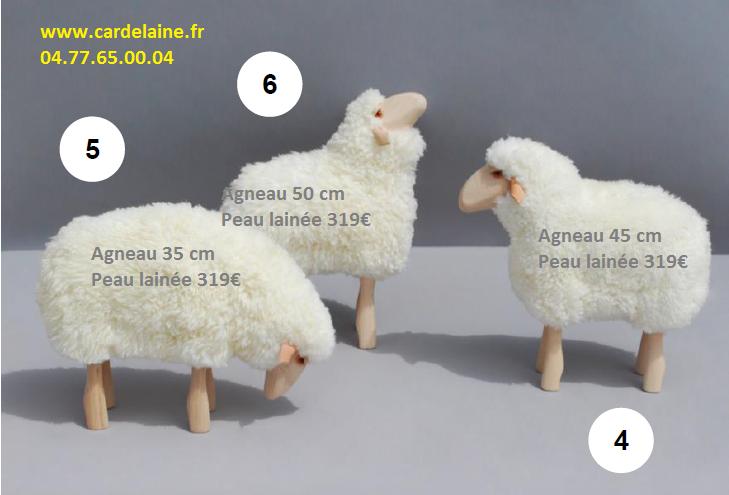 mouton lamb position