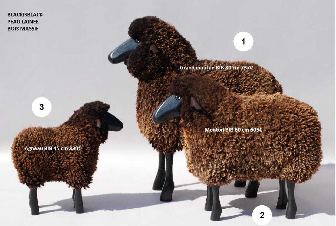 mouton noir tête noire